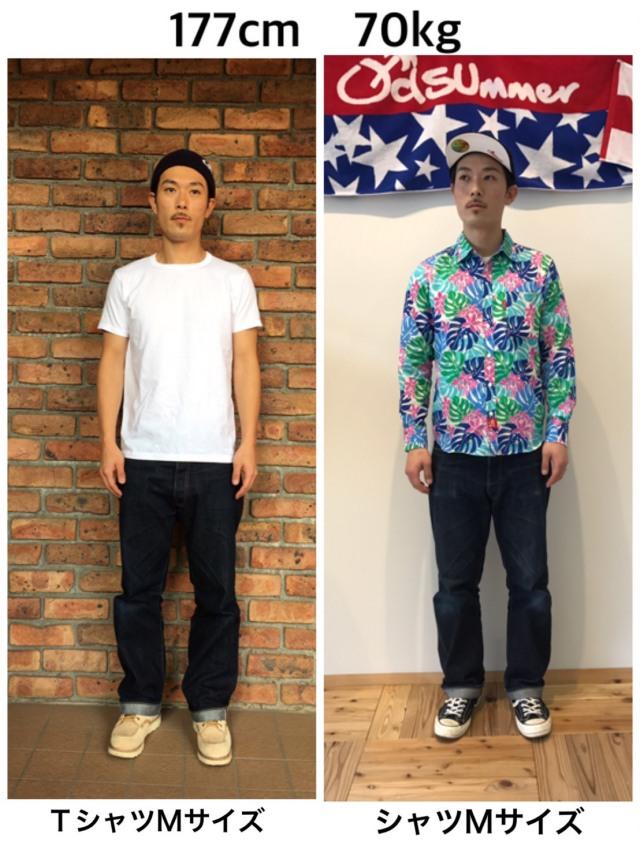 アロカジシャツ
